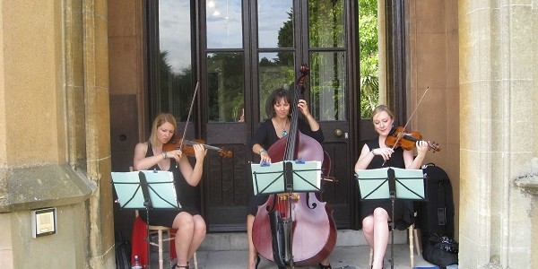 Blue Jewel Strings Trio For Weddings, Events, Function And Parties